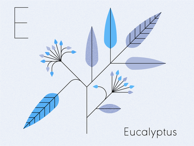 Eucalyptus illustrator alphabet pattern geometric mid century graphic design visual design plants illustration eucalyptus