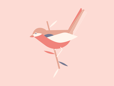 Birdie experience illustrator ui character visual design illustration animal bird