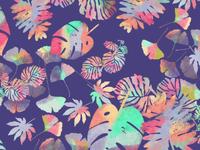 Folium Colorê Pattern