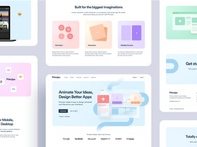 Principo - Interaction & Animation Software design multicolor rounded animated screens ideas interaction animation design app design tools software design software clean gradient card landing page homepage website ux ui