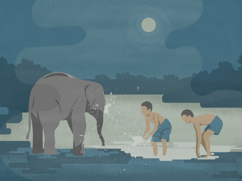 Elephant wash 1