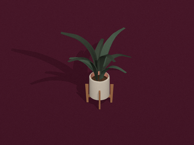 Plant   Sketchbook c4d cinema4d vector 3d design plant