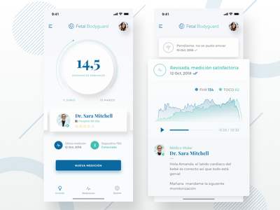 Pregnancy assistant App doctors mothers connecting care prenatal remote ios dashboard interface user ui app