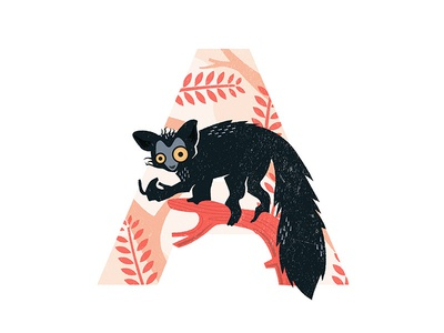 A is for Aye-Aye