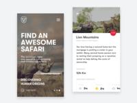 Safari Reviews