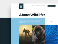 WWF Website Redesign