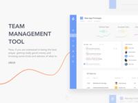 Dashboard - Team Management