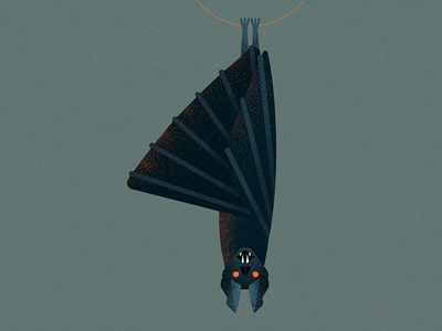 Bat (number 4)