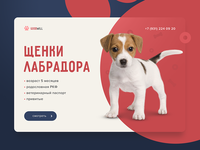 Puppies for Sale banner