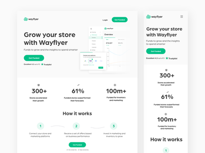 Landing page - Grow your store with Wayflyer ecommerce trustpilot wayflyer woocommerce landing page