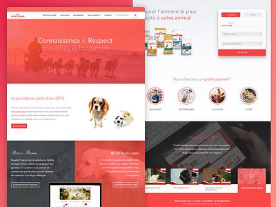 Royal Canin Corporate website food royal canin cats red design webdesign web pets cat dog royalcanin website