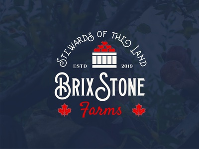 BrixStone Farms Logo brand design orchard farms branding digital art design brand logos logo logo design graphic design