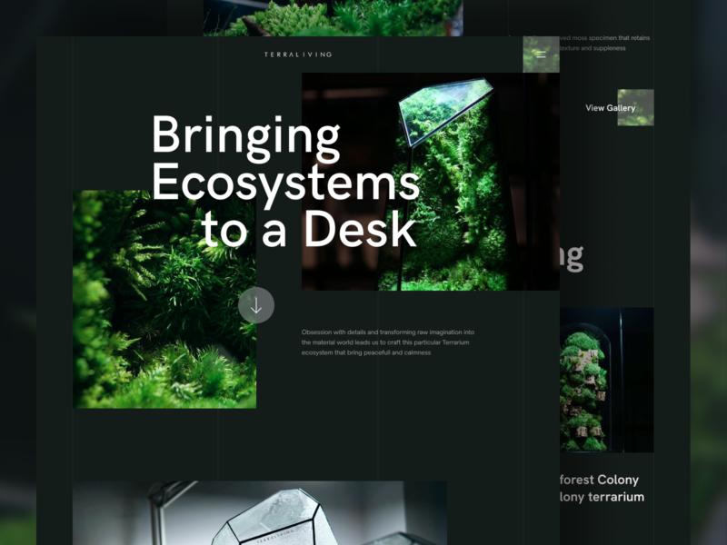 Terraliving -Terrarium Landing Page workspace ecosystem plant terrarium minimalist minimalism homepage web design simple website landing page clean ux ui