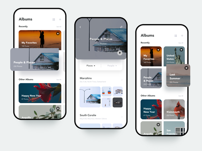 Recent photo album page concept summer snow clean ui ux iphonex interface image editor flickr plants places black white gallery photo album camera albums picture photo app