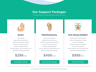 Support Pricing Packages