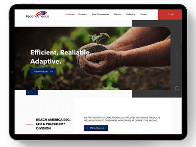 Reach America webdesign prototype web brand web design ui ux guatemala design website