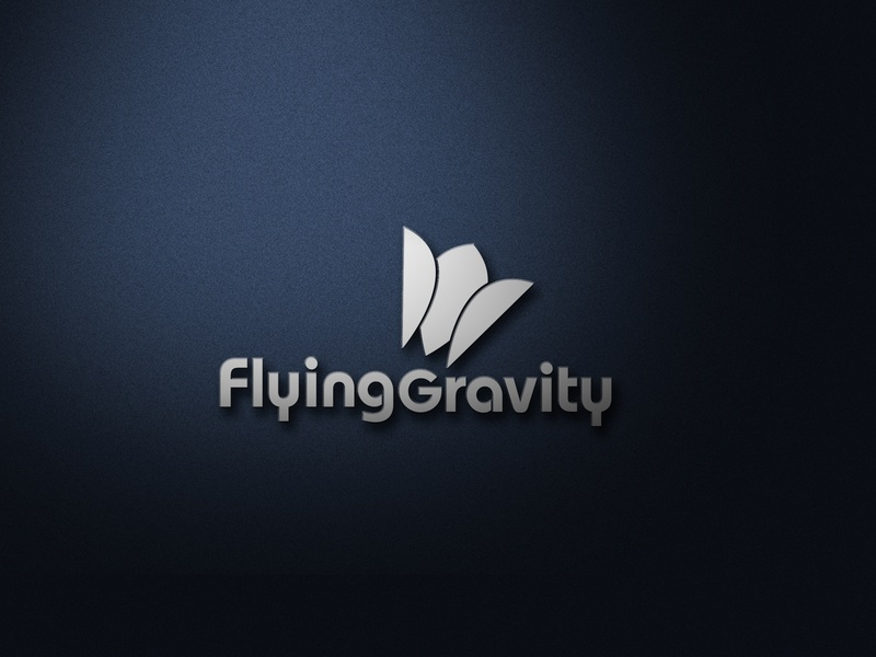 Flying-Gravity graphics designer clean simple graphic design graphics graphic logo design badminton branding design logodesign logos logo