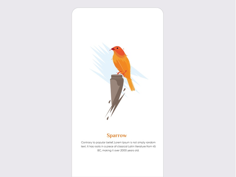Sparrow app iosandroid illustration
