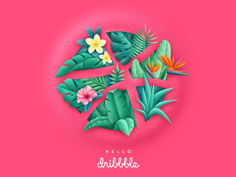 Dribbble tropic dribbble