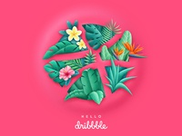 Tropical Dribbble