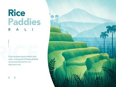 Bali Rise Paddies plantation terrace rice indonesia bali ux web landscape procreate design tropic ui art tropical plants nature flora illustrator illustration