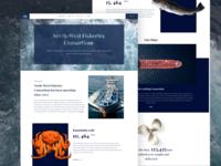 North-West Fisheries  Consortium | Web design