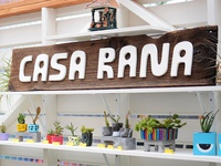 Casa Rana wood graphic logo draw type typography lettering drawing