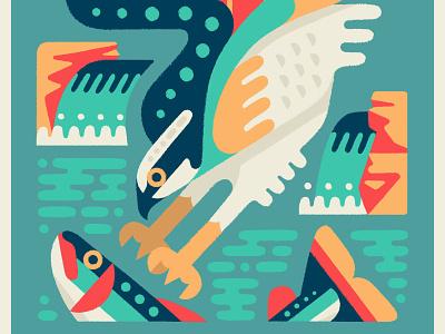 Osprey wildlife illustration animals wildlife drawing illustration