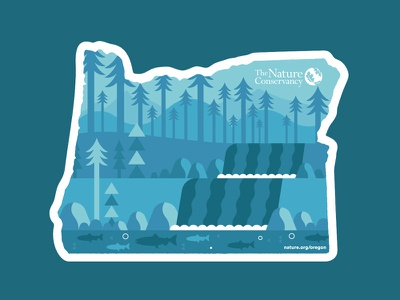 The Nature Conservancy Oregon mountains field guide oregon trees conservancy nature illustration