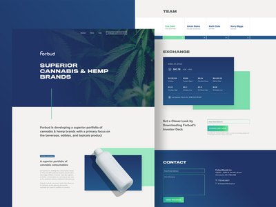 forbud dribbble design system typography marketing site web design branding ui