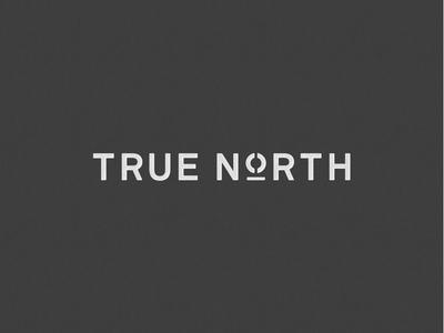 True North logo concept icon custom typography minimal clean logo