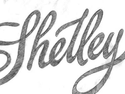Shelley Allegro informal script script lettering logo sketch hand lettering fuse sessions ken barber shelley allegro