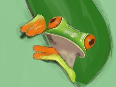 Redeye tree frog illustration drawing tree frog redeye procreate