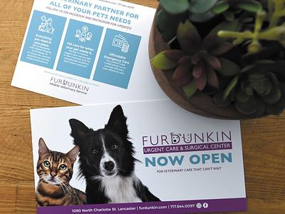 Veterinary Urgent Care & Surgical Center Postcard postcard print ad graphic designer graphic design design