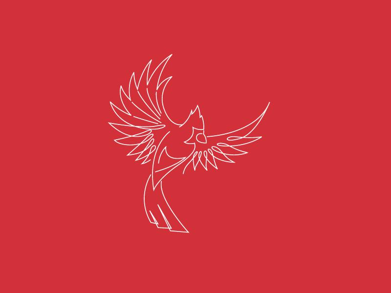 Line Cardinal Logo logo tshirt illustrator apparel cardinal lines illustration