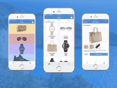 Firebase iOS Shopping/Ecommerce App for iPhones in Swift mobile templates shopping ios ecommerce