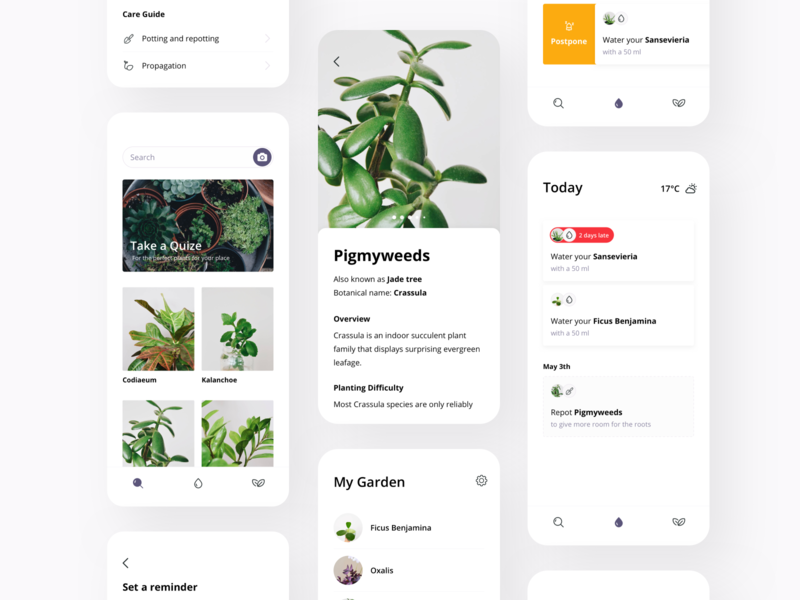 Plants app mobile ios care guide postpone reminder watering can catalogue search ux ui plants garden flowers cards app
