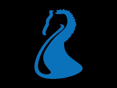 bluehorse business. powerful stamina energy finance