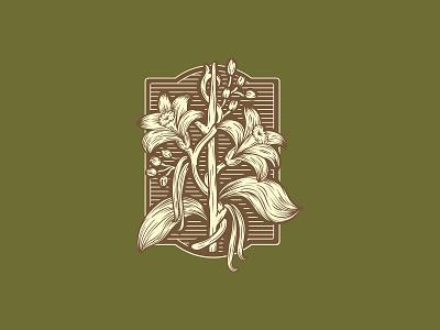 Vanilla Badge bud leaf flavor beer plant flower bean vanilla badge