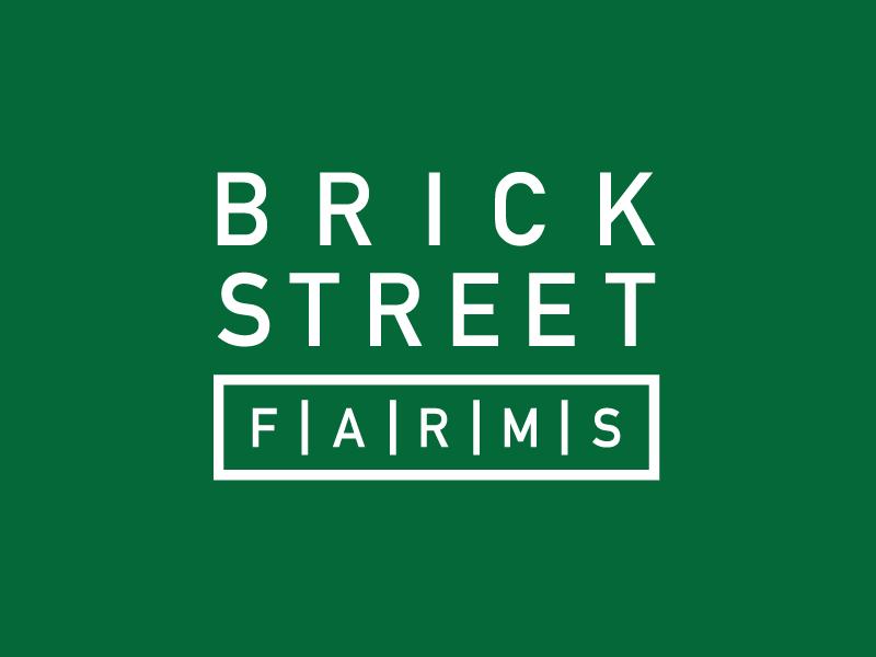 Brick Street Farms typography logo branding