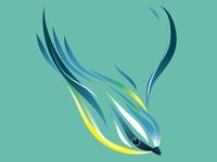 Speed Bird