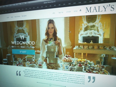 Maly-home page web home page design luxury ui