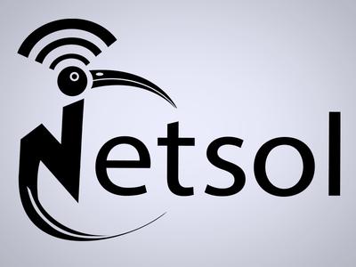 Netsol logo logo bird wifi branding