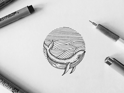 Whale Hello There sketch illustration black and white ink pen whale