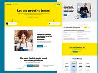 buzzin'proof webdesign brand typography web design branding design ui