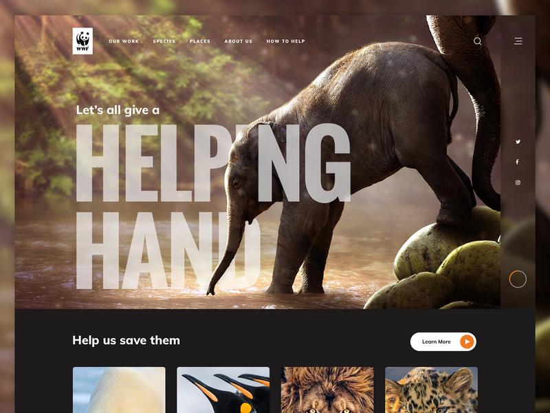 WWF cards typography images photography photoshop ui hero wwf water elephants animal landing design zoo