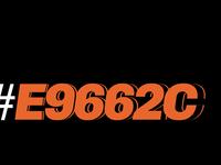 Evermark Orange 1