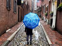 Umbrella design
