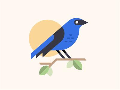 Indigo Bunting bird design flat iconography icon art app layout clean type typography minimalistic minimal web website illustration