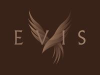 Evis UAE - Logo redesign